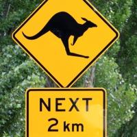 australien2011_019