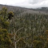 australien2011_023