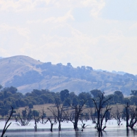 australien2011_028