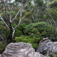 australien2011_072