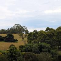 australien2011_039