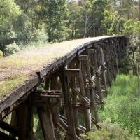australien2011_104