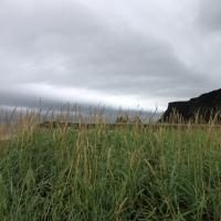 island_2012_007
