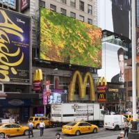 new-york2014_0059
