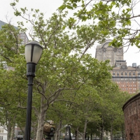new-york2014_0070