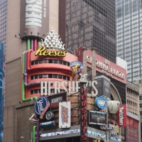 new-york2014_0058