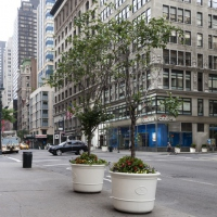 new-york2014_0141
